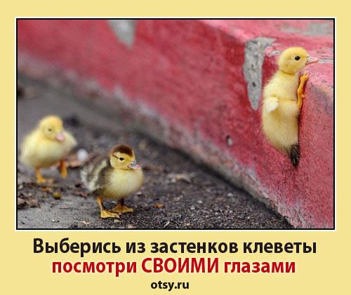 демотиваторы про РПЦ